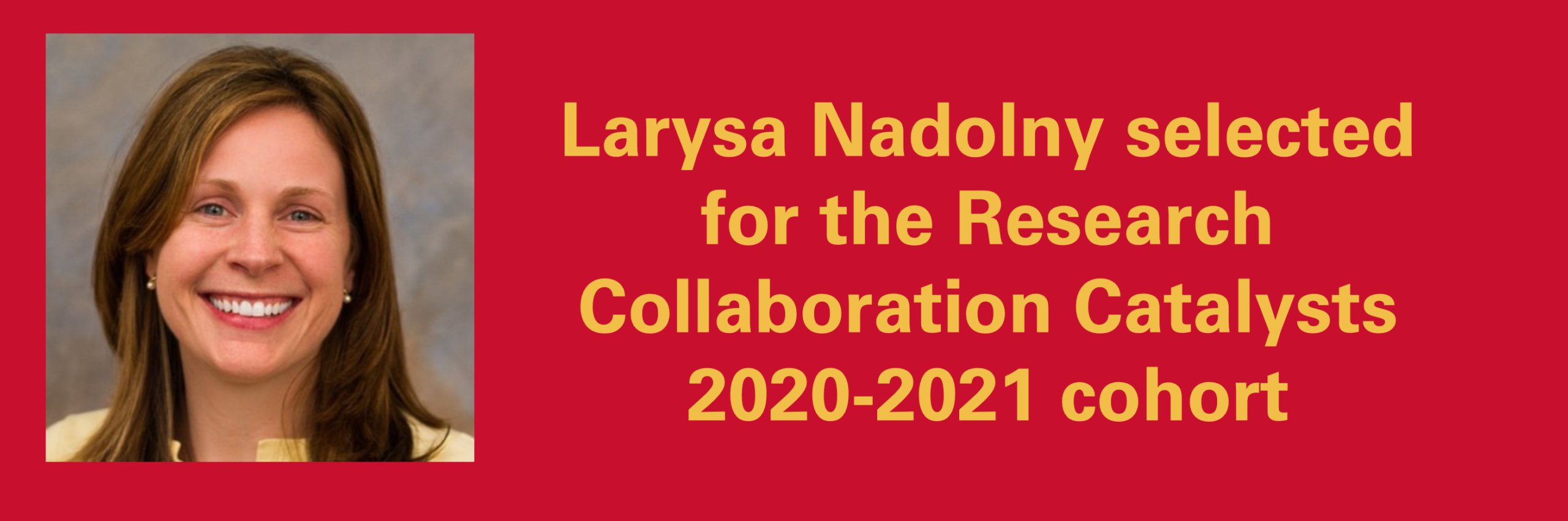 Larysa Nadolny selected for the Research Collaboration Catalysts 2020-2021 cohort